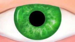 Зеленые Линзы